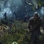 The Witcher 3 Wild Hunt scr3